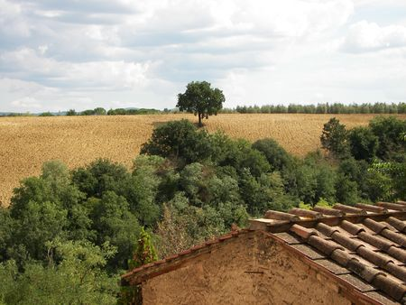 view over typical Tuscany landscape photo