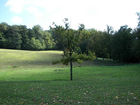 Public park in the North of Florence from central Italy