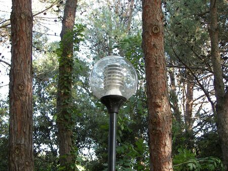 The strretlight in the forest Stock Photo