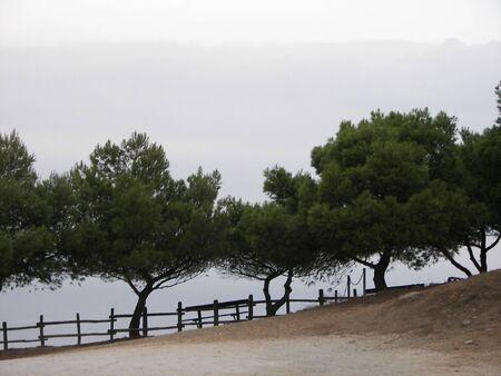 Populonia Landscape Stock Photo