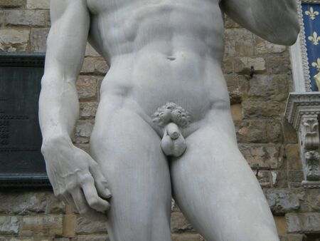 The David by Michelangelo Buonarroti photo