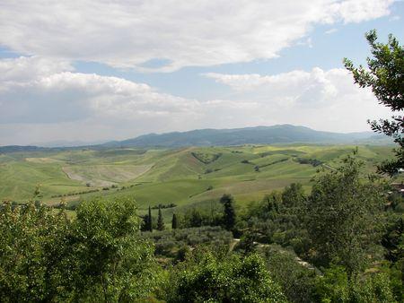 albero: Panorama Toscana