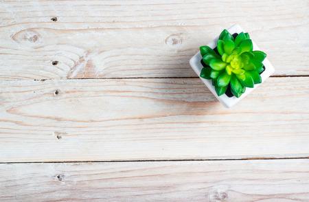 petites fleurs: Succulent dans le pot table en bois de fond avec copie espace Banque d'images
