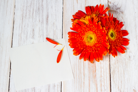 orange colorful gerbera flowers and blank card on the wooden table