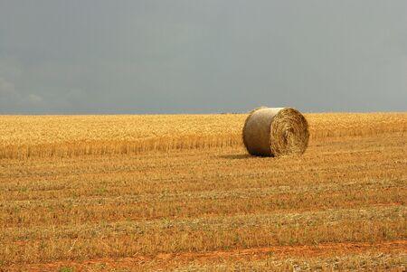 Hay Bale Stock Photo - 2998206