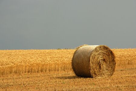 Hay Bale Close up Stock Photo