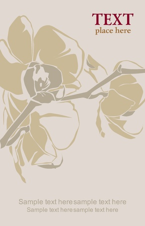Orchid branch illustration Vector