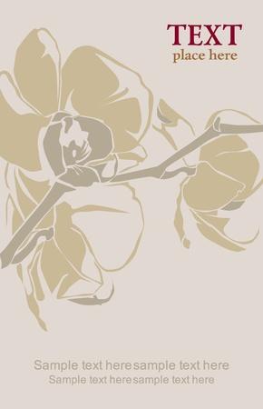 Orchid branch illustration Vector