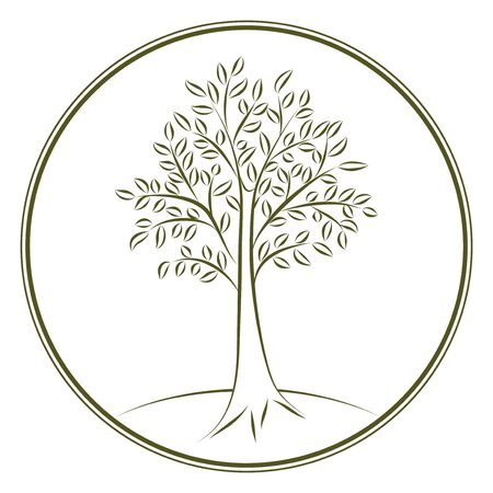 acacia: Calligraphic ink tree