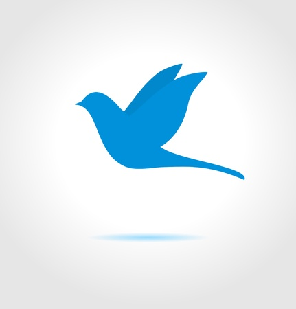 bird shadow: Blue bird on gray background  Abstract  symbol