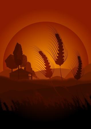 bucolic: Scena bucolica di un caldo pomeriggio nei campi di cereali. Questa illustrazione trasmette pace e la tranquillit� di questa scena. Sullo sfondo si vede una casa
