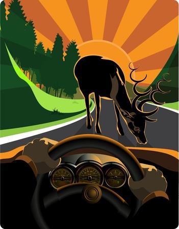 geteilt: Ein Beispiel f�r ein Auto fahren und Ausweichen Gefahren im Stra�enverkehr Es wird in Schichten unterteilt perfekt editierbar Illustration