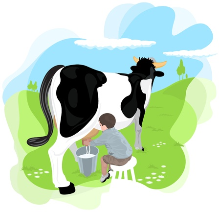 milking: A boy milking a cow in the meadows of the farm school  It is divided into layers perfectly editable