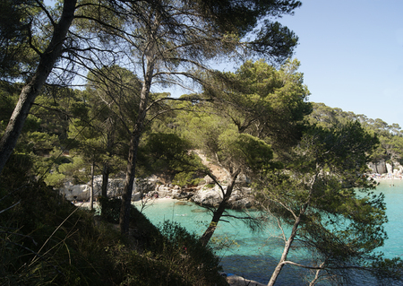Typical Menorca beach, surrounded by greenery and turquoise waters.