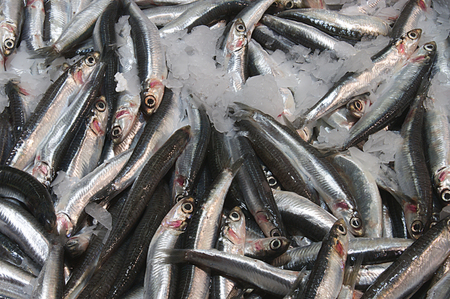 Fresh anchovies surrounded by ice in the fish market Stock Photo