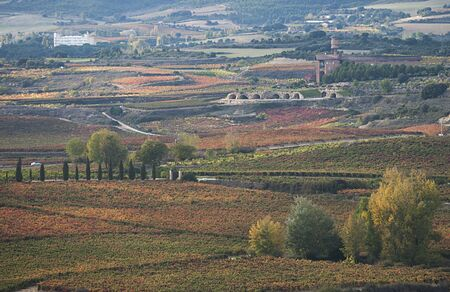 Autumnal landscape with vineyards of Rioja in Spain Stock Photo