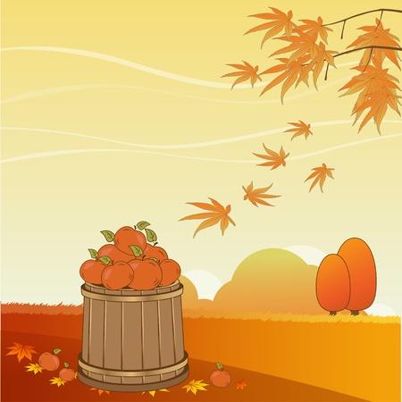 non urban scene: Autumn background
