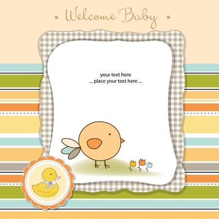 newborns: welcome baby