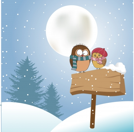 snow fall: Love birds Illustration