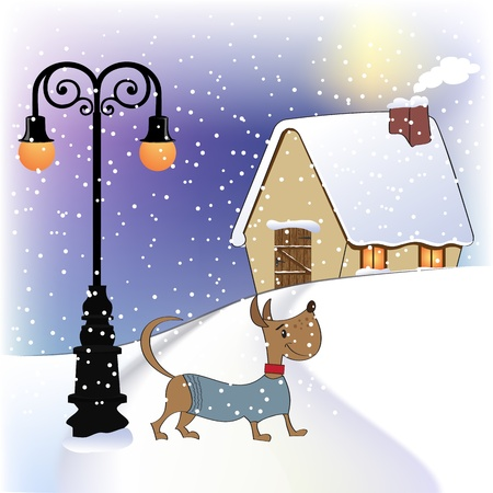 animal winter: Christmas card with happy dressed dog