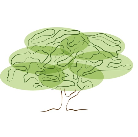 stylized tree silhouette isolated on white background Stock Vector - 20343652