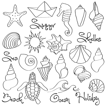Hand drawn doodle Seashells and Sea elements set. Vector format