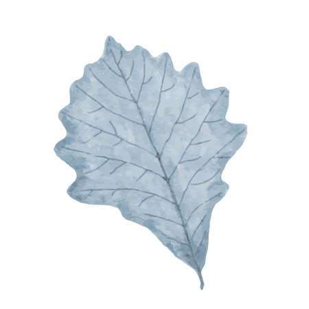 Watercolor winter frozen leaf isolated on white background, vector format