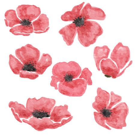 ensemble de fleurs de pavot aquarelle isolé sur fond blanc, format vectoriel Vecteurs