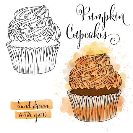 Beautiful hand drawn watercolor cupcakes with pumpkin. Vector format