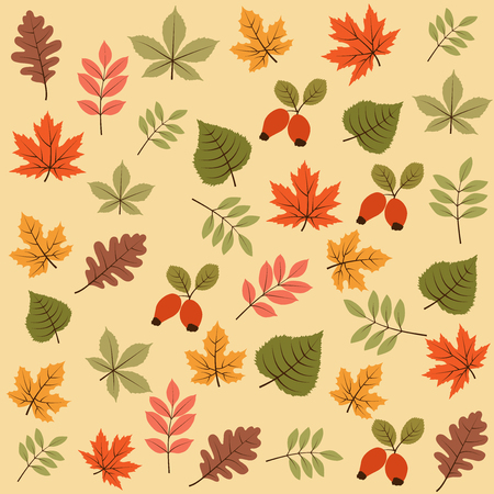 autumn seamless pattern with leaves, vector