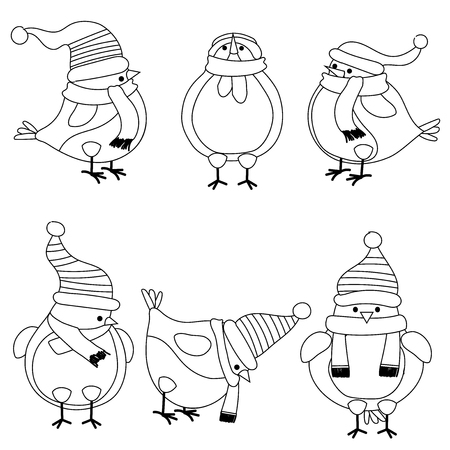 Christmas birds collection for coloring book, isolatd items
