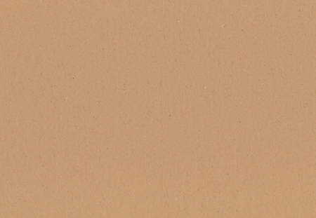 piece of brown and corrugated pasteboard