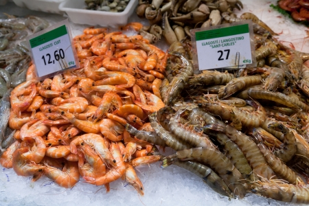 boqueria:  Black tiger and red prawns for sale in the market of La Boqueria in Barcelona - Spain Editorial