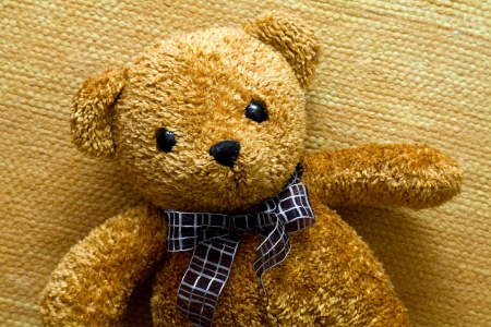 toy bear: Cute teddy bear
