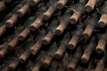 betray: Botellas antiguas de vino en las filas de bodega. Las telas de ara�a y el polvo en las botellas de traicionar a su edad.