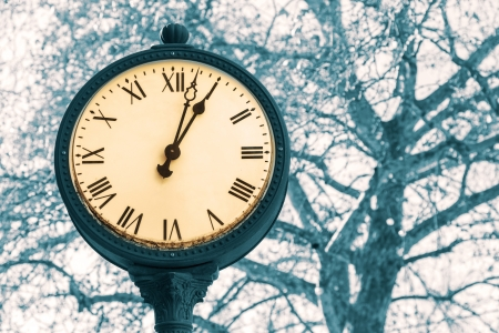 A municipal street clock in a town square photographed against a tree branches