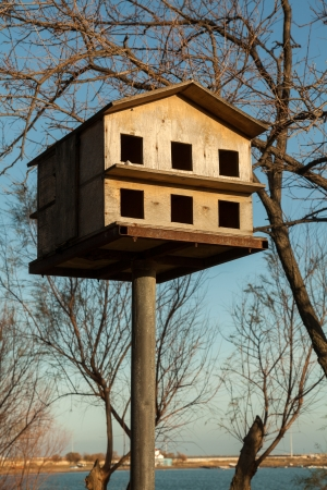Wooden dovecot in a park  Bird nesting box photo
