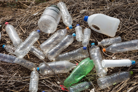 trashy: Beach pollution. Plastic bottles and other trash on river beach