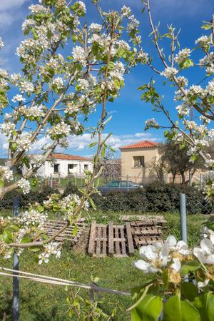 mountainous: Landscape in a mountainous Greek village Stock Photo
