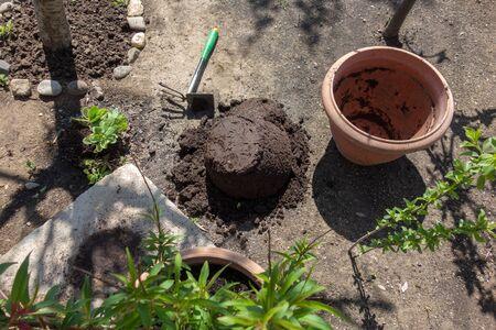 mesa rústica con macetas, tierra para macetas, llana y las plantas