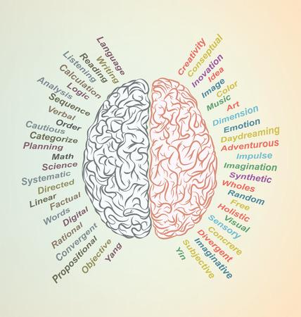imagine a science: Creative brain Idea