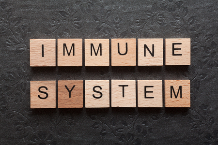 The word immune system formed with wooden letters on dark background