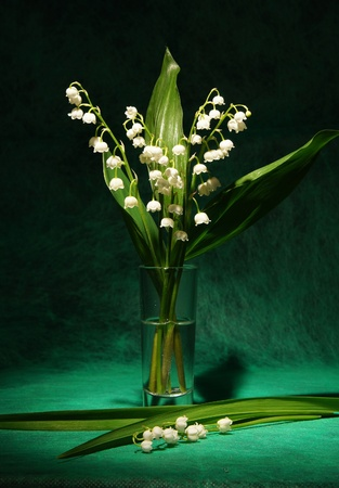 Still-life with a bouquet of lilies of the valley Stock Photo - 9885559