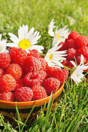 Fresh ripe raspberry on the green grass background photo