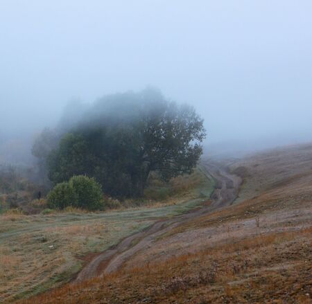 Beautiful autumn landscape with a country road in a fog Stock Photo - 11048608
