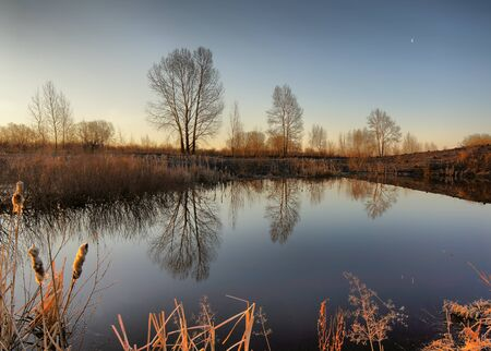 Morning on the little pond Stock Photo - 13227148