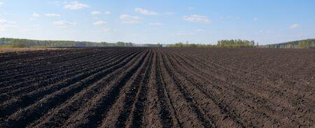 plowed: Plowed field Stock Photo