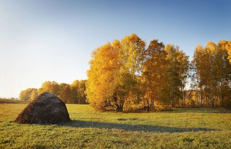 haycock: Autumn landscape with haycock on a meadow Stock Photo