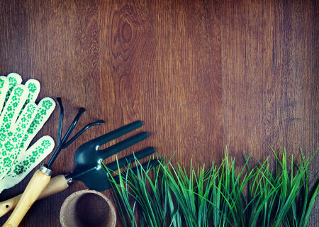 Garden tools over wooden background photo