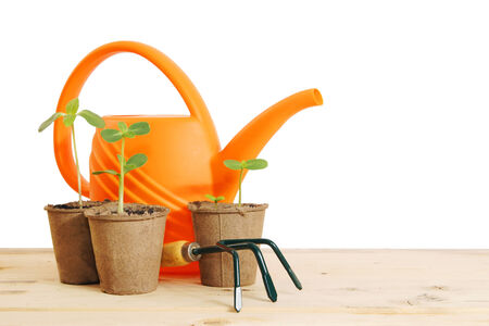 Pots with seedlings and watering can isolated over white background photo